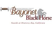 bayonet_blackhorse-175x100